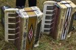 festiwal-akordeon-2020-1